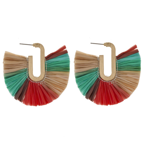 "Long multicolored raffia tassel earring. Approximate 2"" in length."