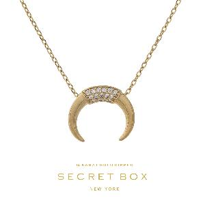 "Secret Box 14 karat gold dipped over brass necklace with a horn pendant. Approximately 16"" in length."