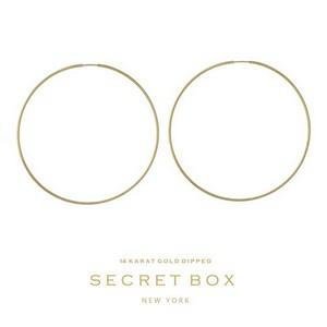 """Secret Box 14 karat gold dipped over brass hoop earrings. Approximately 2.5"""" in diameter."""